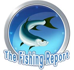 fishing_report_250